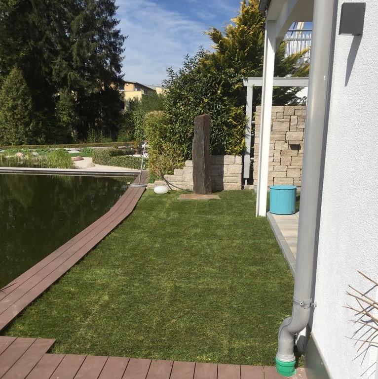 Rollrasen Gartengestaltung Rosenheim